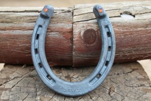 lucky-horseshoe-charm